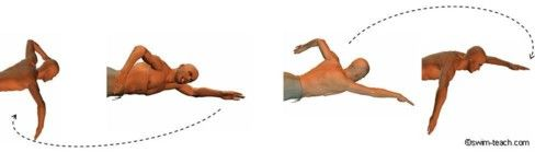 Front crawl arm technique showing the catch, pull and recovery cycle.