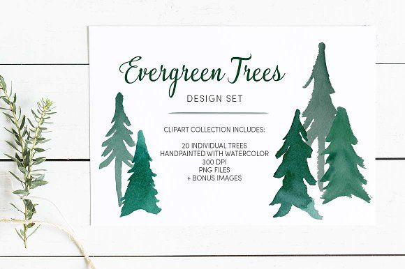 Evergreen Trees Clip Art Clip Art Photoshop Brush Set Evergreen Trees