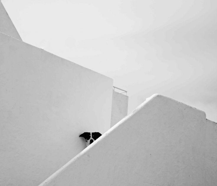 20Fotografías que son elparaíso minimalista para los sentidos