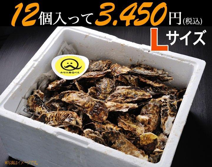 三陸石巻雄勝の浜でとれたプリプリの牡蠣を味わう!       殻付き牡蠣(Lサイズ:200~280g) 12個~かき/カキ/産地直送