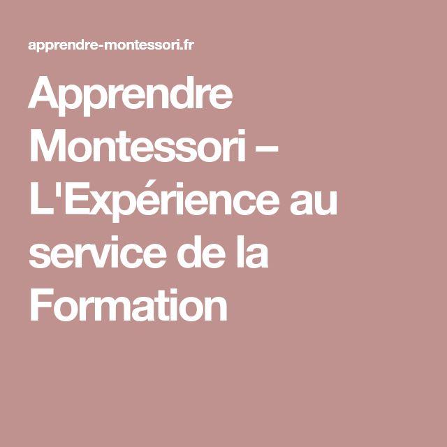 Apprendre Montessori – L'Expérience au service de la Formation