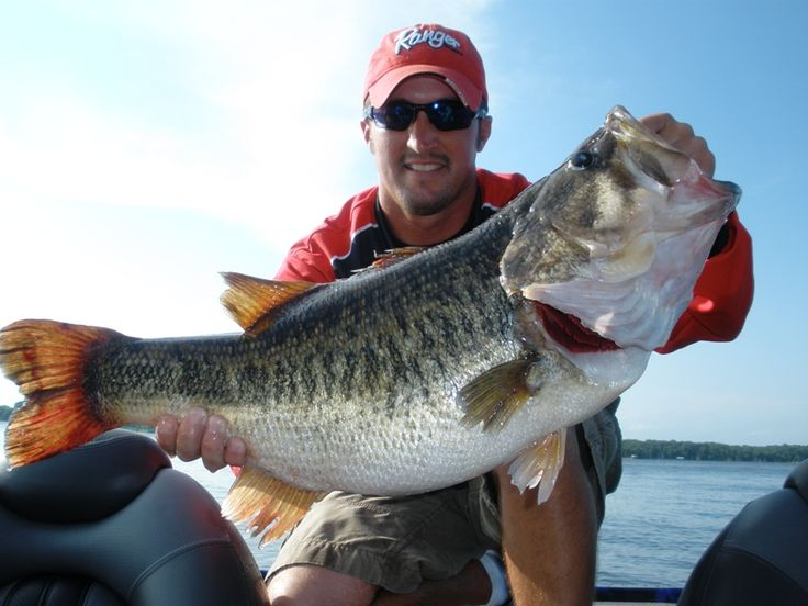 12 best fishing guides on lake fork images on pinterest fishing lake fork trophy bass carolina rig how to rig it how to fish it when to use it excellent info on the gr fandeluxe Choice Image