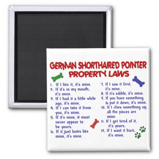 GERMAN SHORTHAIRED POINTER Property Laws 2 Refrigerator Magnet in each seller & make purchase online for cheap. Choose the best price and best promotion as you thing Secure Checkout you can trust Buy bestShopping GERMAN SHORTHAIRED POINTER Property Laws 2 Refrigerator Magnet...