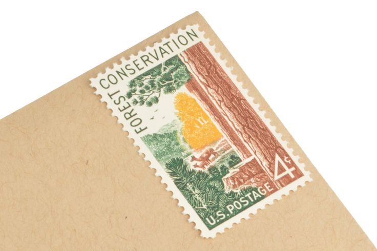 1958 Unused vintage 4 cent forest conservation postage stamps. The stamp features a design by Rudolph Wendelin of trees and wildlife. You will receive 25 total stamps all in mint condition. Perfect for wedding envelopes, postcards, birthday invitations or scrapbooking!  Quantity: 25 Face Value: 4 cents each Year of Issue: 1958  Looking for other stamps to go with these? Please visit the Vintage Postage section of our shop: https://www.etsy.com/shop/GubbaGumma?section_id&#x...