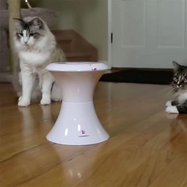Dart Duo Laser Cat Toy #Cat, #Laser, #Toy