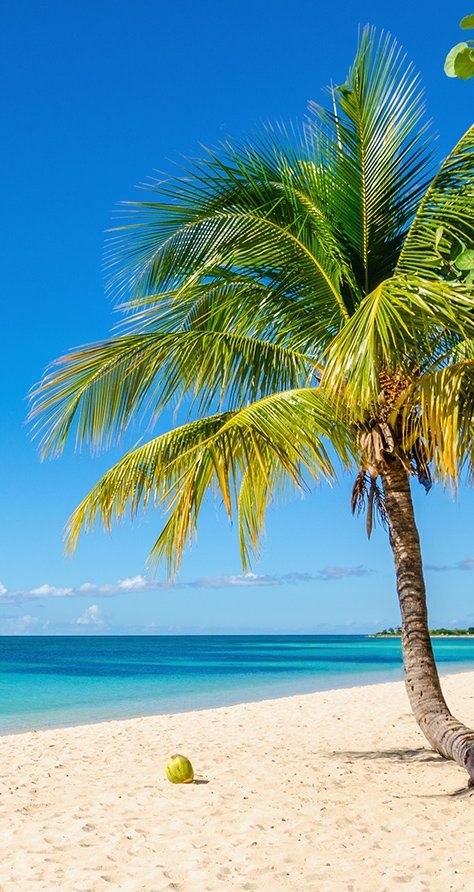 Bridgetown, Barbados | With pristine beaches widely acknowledged to be some of the best in the world, Barbados is beach vibes to the max. Cruise with Royal Caribbean to Bridgetown, Barbados and catch some waves for yourself.
