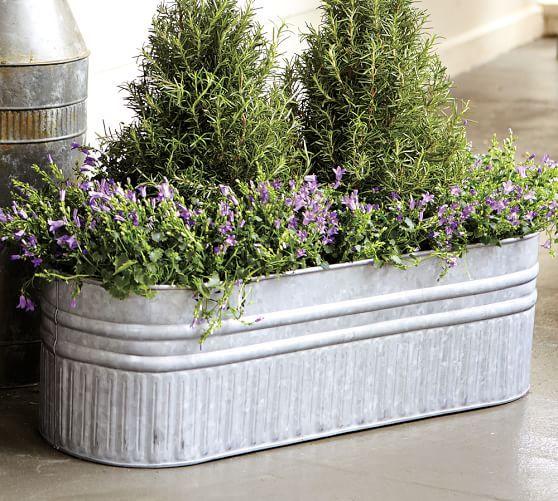 Kitchen Garden Box With Wire Top: Best 25+ Metal Planters Ideas On Pinterest