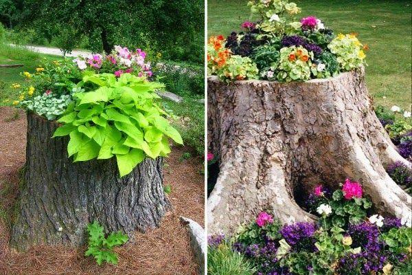 Guia de jardin. Blog de jardinería y plantas. Jardín en casa.: 5 ideas para decorar el tocón de un árbol talado