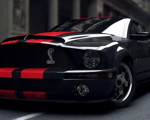 Mustang Cobra                                                                                                                                                      More