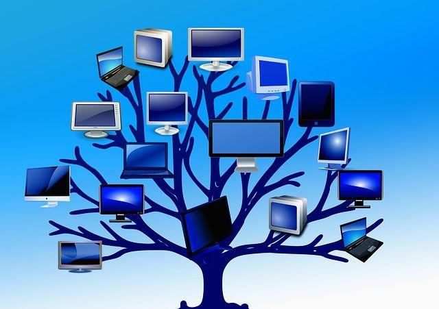 Drzewo, Struktura, Monitory, Ekrany, Komputer, Sieci
