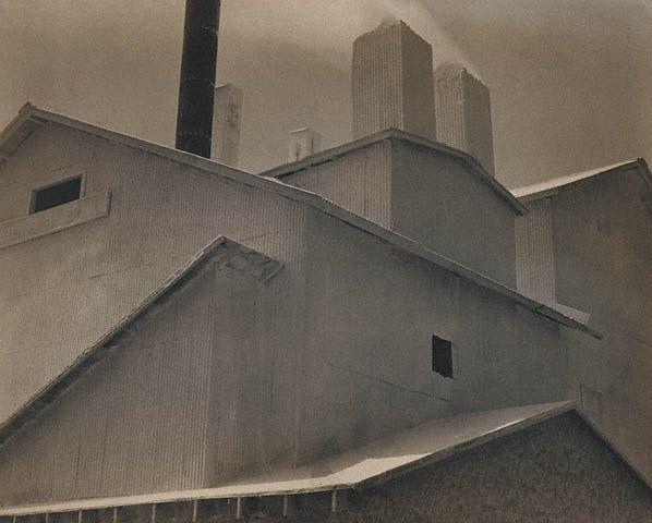 Edward Weston. Los Angeles, 1925 •●