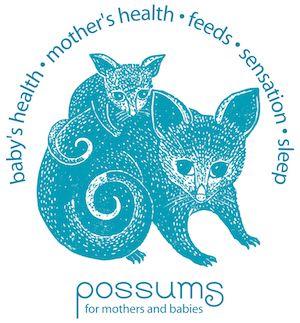 PRP017: The Possums Sleep Intervention Part 1