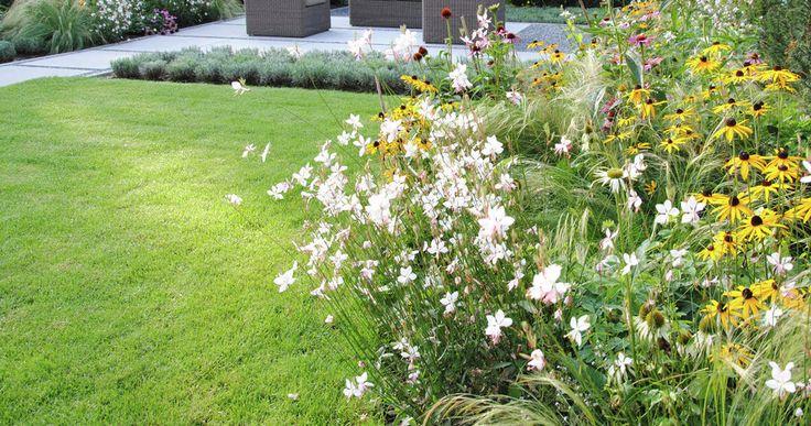 17 beste idee n over moderne tuinen op pinterest modern tuinontwerp hedendaagse tuinen en - Tuin exterieur ontwerp ...