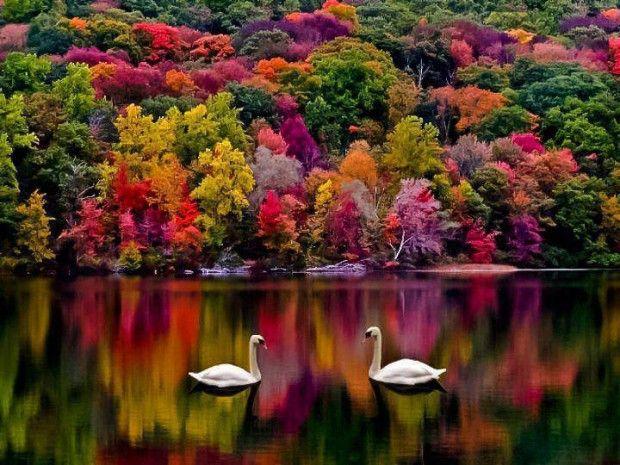 Autumn in New Hampshire, USA