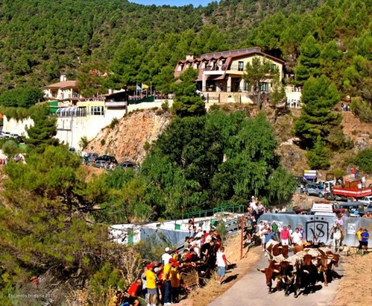 Vista de los encierros de #bogarra #albacete desde nuestro hotel