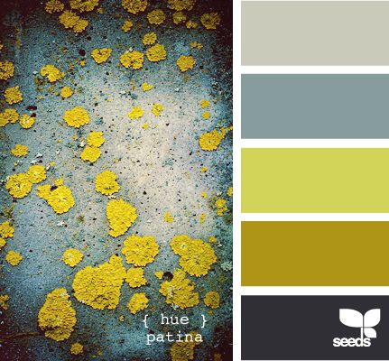 patina anc lichen  -  a perfect inspiration for exploring dying fabric and emb. for the lichen. getting that fine texture and miniscule cups in that acid green. YUM!