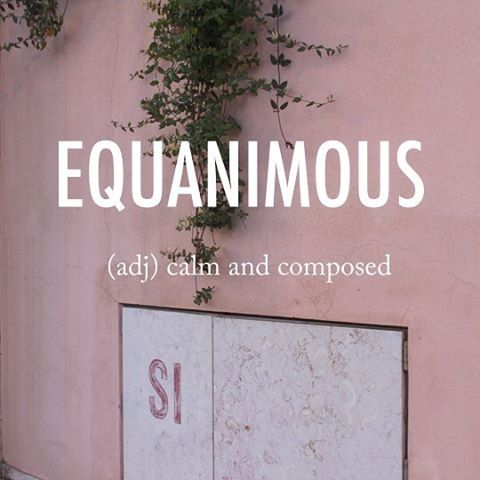 Equanimous |ɪˈkwanɪməs, iː-| mid 17th century origin from Latin aequanimus, from aequus 'equal' + animus mind #beautifulwords