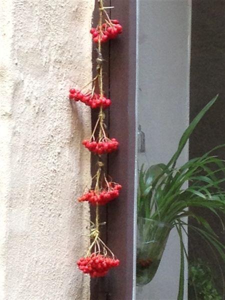 Sensommaren och hösten har så vackra färger. Så här fint blir det med små buketter av rönnbär på tråd. Det är min kollega Daniela som gjort detta och hängt vid familjens uteplats på deras innergård.