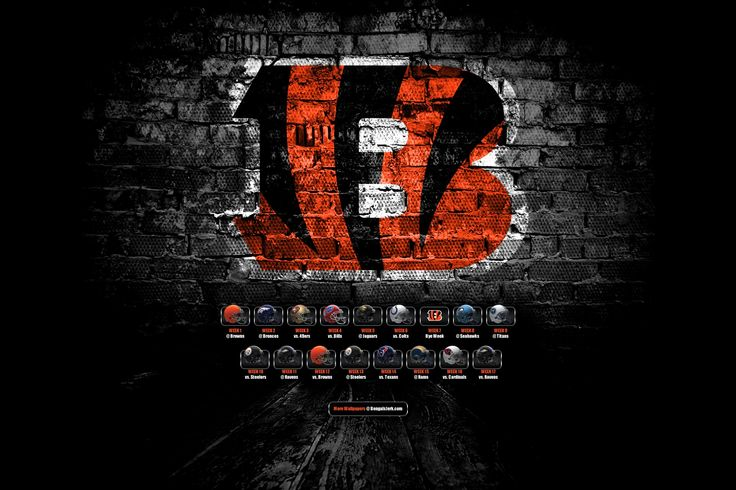 cincinnati bengals hd wallpaper