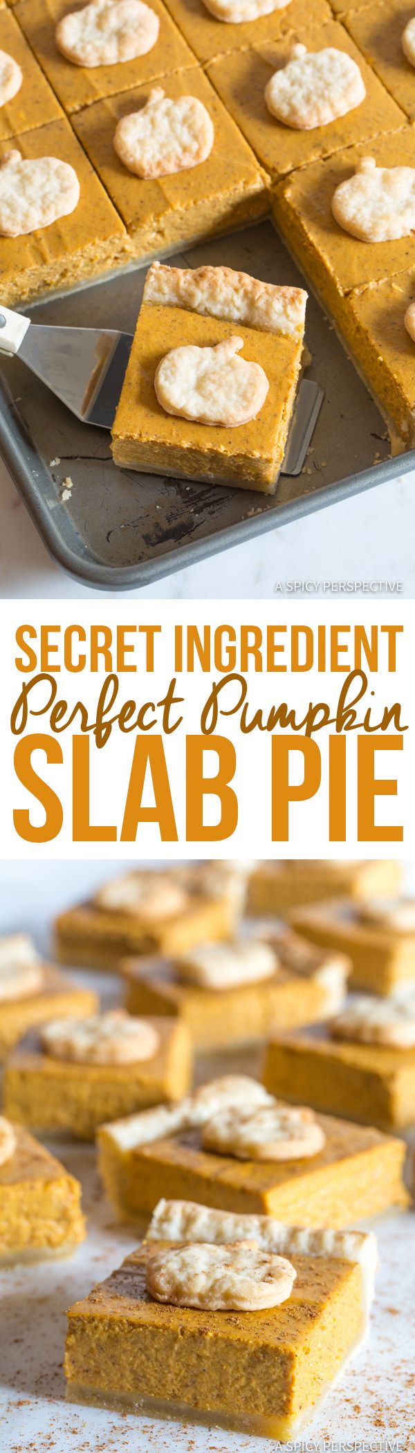 The Best Secret Ingredient Perfect Pumpkin Slab Pie Recipe | ASpicyPerspective.com #halloween #thanksgiving