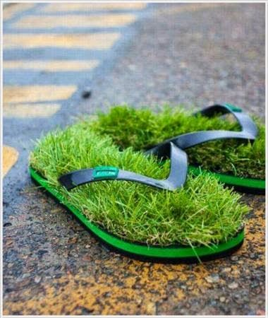 fbfunnyphoto: Grass Funny Shoe Photo