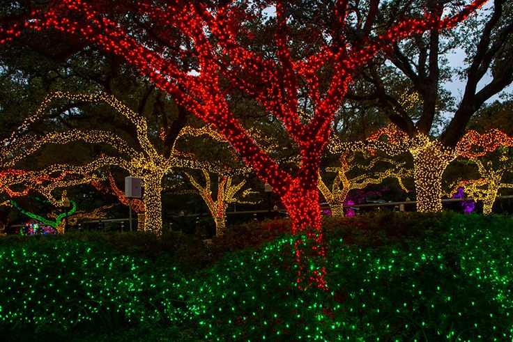 2014_VIP_Zoo_Lights-0002web