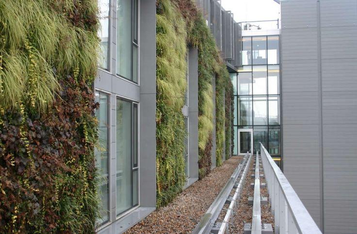 Mint Hotel   Frosts Landscape Construction UK
