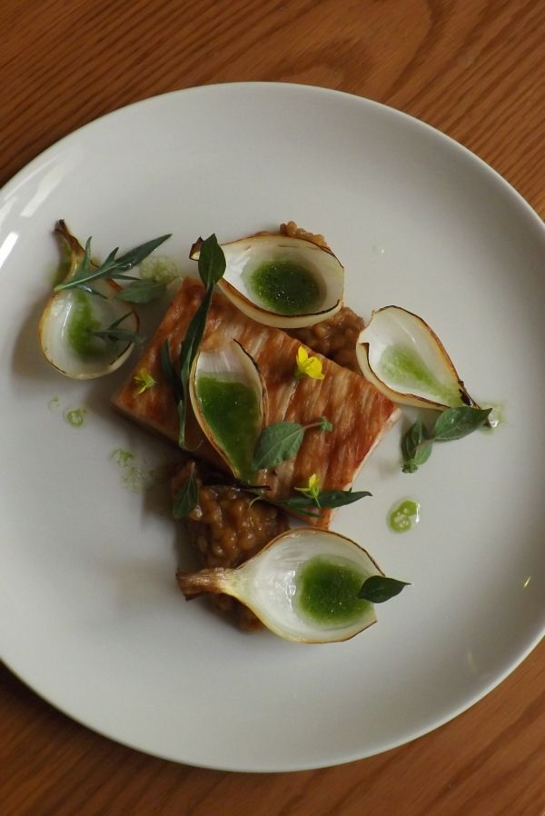 Slow roasted pork belly, charred onions, toasted barley and onion compote, sorrel juice and smoked oil