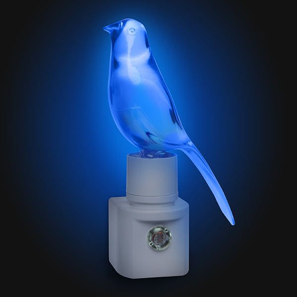 ThinkGeek :: Blue Canary in the Outlet by the Light Switch: Birdhouses, Lights Switch, Little Birds, Night Lights, Birds Houses, Outlets, Blue Canary, Light Switches, Lightswitch