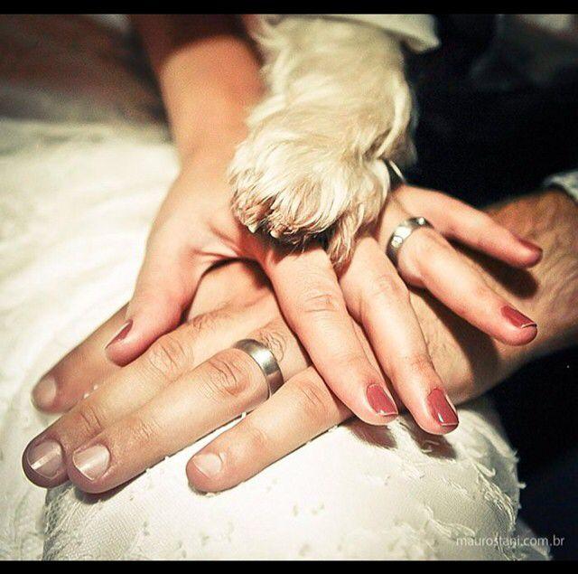 Veja as dicas de como incluir o seu animal de estimação no seu casamento…
