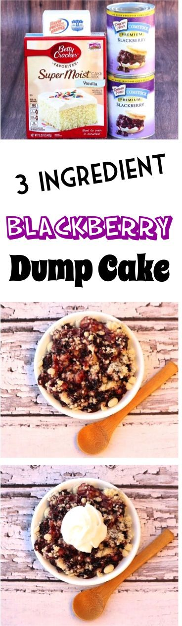 Easy Summer Dessert Recipes! This Crockpot Blackberry Dump Cake is seriously yummy!