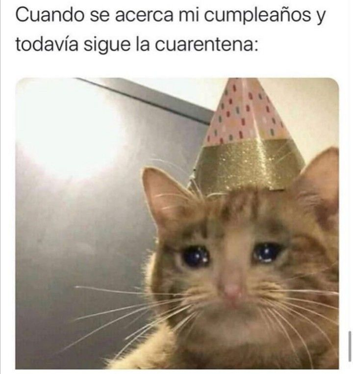 Pin On Los Mejores Memes