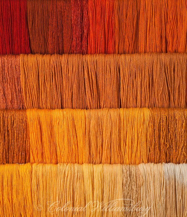 Studio photography of various colors of yarn dyed at the Weaver's shop. Shot for book by Max Hamerick on dyeing textiles; Orange dyed with Madder Photo by Barbara Temple Lombardi