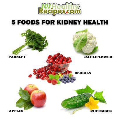 Is Raw Diet Good For Dogs With Kidney Disease