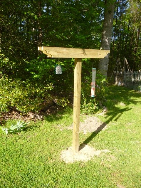 Post For Hanging Bird Feeders Mike Pinterest For The