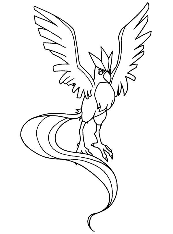 a great bird pokemon coloring pages - Grass Type Pokemon Coloring Pages