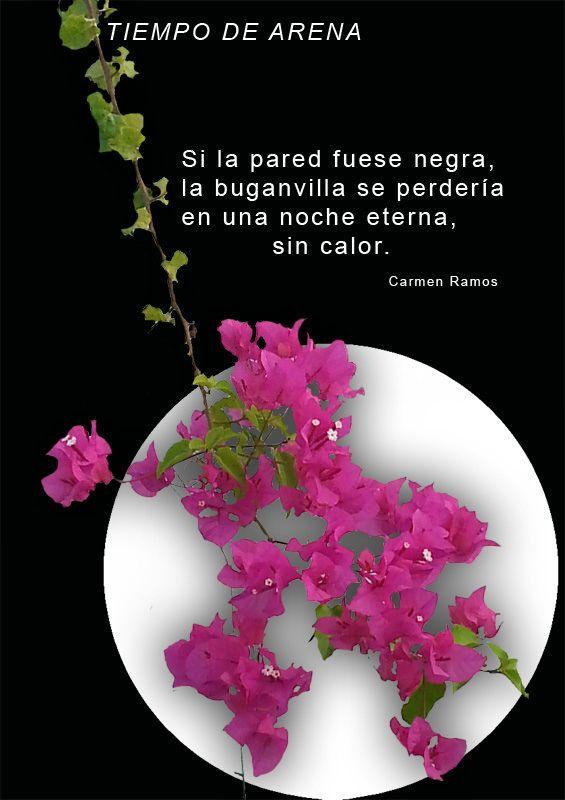 https://flic.kr/p/xbTkcG | Versos de Tiempo de arena. Carmen Ramos | Sí es negra la pared que sube a tu pupila. Poema visual de Carmen Ramos y Antonio Santana