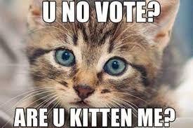 Image result for vote meme