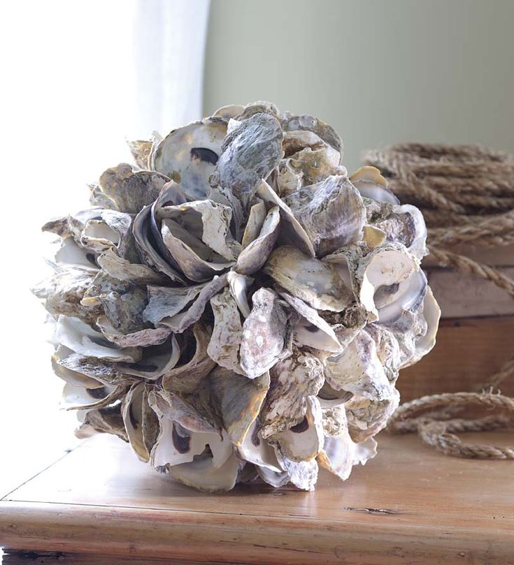 oyster shell decor oyster shell accent 10 quot sunroom home 1360