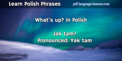 Learn Polish online | Free Polish lessons
