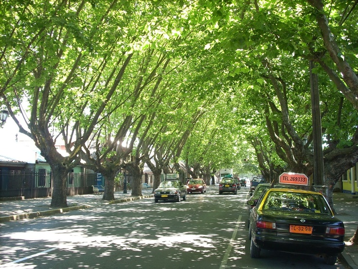 Calle O'Higgins, Chillan Viejo, Chile