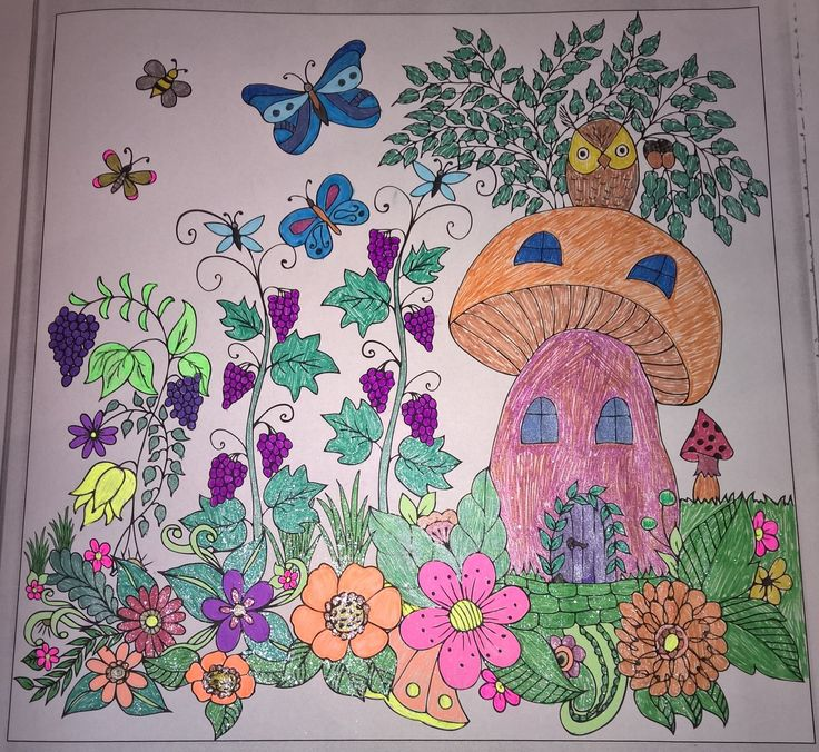 Mushroom house, grapes, flowers butterflies, owl   #colouringbooks #colouringforadults #adultcolouring #adultcoloring  #stressfree #relaxing #blending