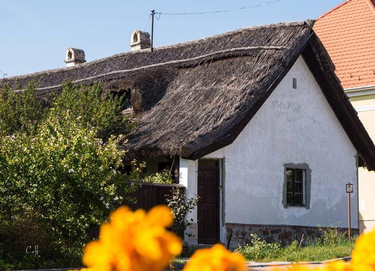Sukoró, nádfedeles ház (forrás: Kirándulásaim)