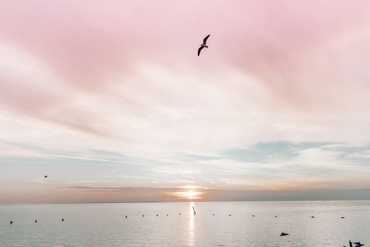 pastel sky sunset Start Living Your Best Life - Blogi | Lily.fi
