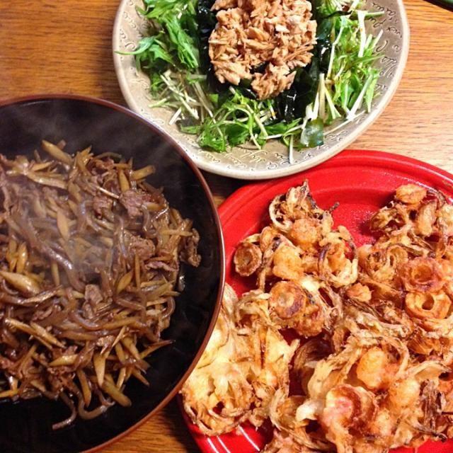 小エビのかき揚げは玉ねぎ、ちくわ、紅生姜と小エビ。きんぴらは牛肉とごぼうとこんにゃく。 サラダは水菜、シーチキン、わかめです。かき揚げめちゃうまい(∩∩)♡自分の作るので1番好きかもପ(⑅ˊᵕˋ⑅)ଓ - 3件のもぐもぐ - ★小エビのかき揚げ★きんぴら★水菜とシーチキンのサラダ by 三宅 里美