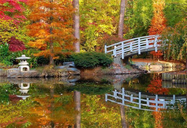 bridge and autumn 12 (640x438, 396Kb)