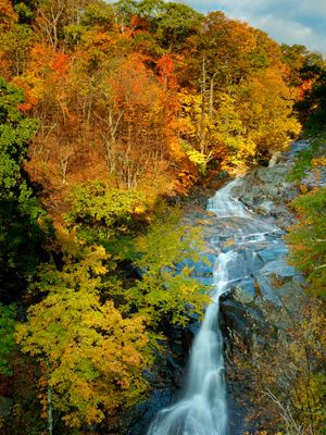 White Oak Upper Falls in Shenandoah National Park, Virginia.  I want to get married somewhere in this park. :)