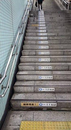 階段の消費カロリー 一歩登ると0.1Kcal消費。全部登ると4.7Kcal。