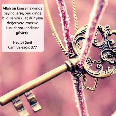 Allah bir kimse hakkında hayır dilerse, onu dinde bilgi sahibi kılar, dünyaya değer verdirmez ve kusurlarını kendisine gösterir. Hadis-i Şerif - Camiü's-sağir, 377