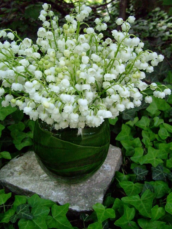 Flowers and malachite in the garden. display of